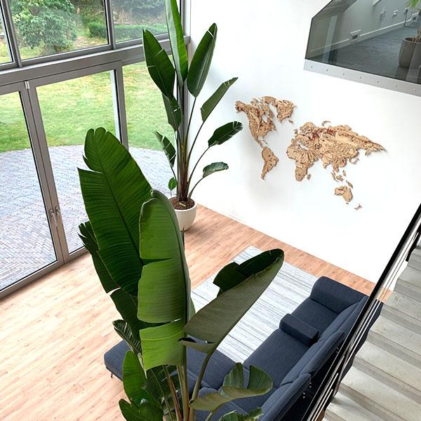 >225 cm planten