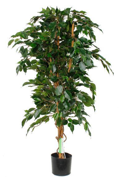 Prachtig grote Ficus Exotica kunstplant kopen bij 123planten