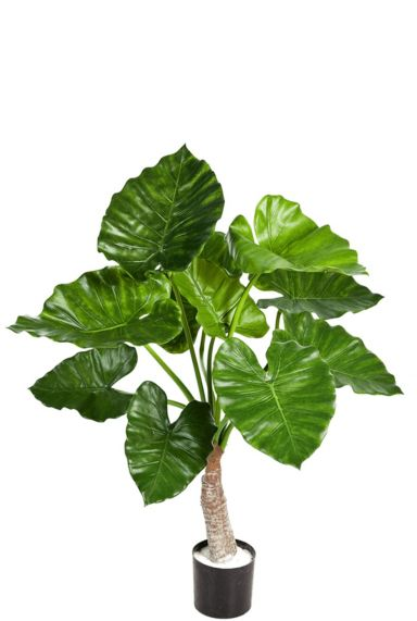 Alocasia calidora kunstplanten