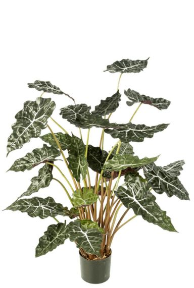 Alocasia kunstplant