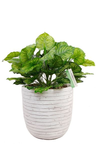 Calathea kunstplant in sierpot