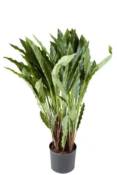 Calathea kunstplant zijdeplant