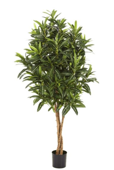 Croton plant kunstplant