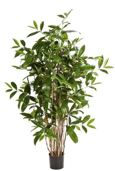 Dracaena surculosa kunstplant