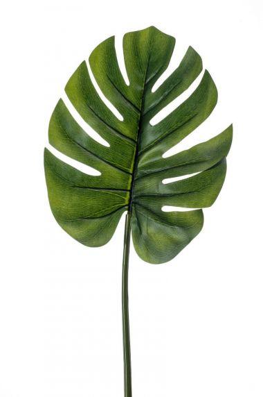 Emerald-monstera-blad
