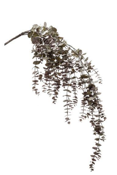 Eucalypthus tak kunstplant
