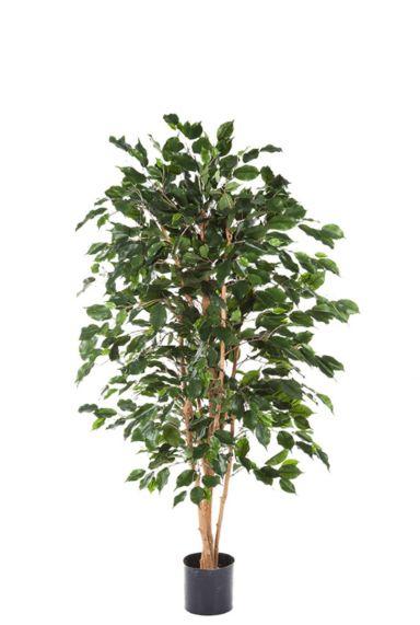Ficus exotica kunstboom