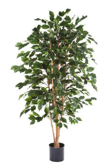 Ficus exotica kunstplant