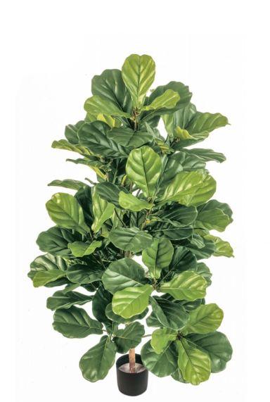 Ficus lyrata kunstplant 1