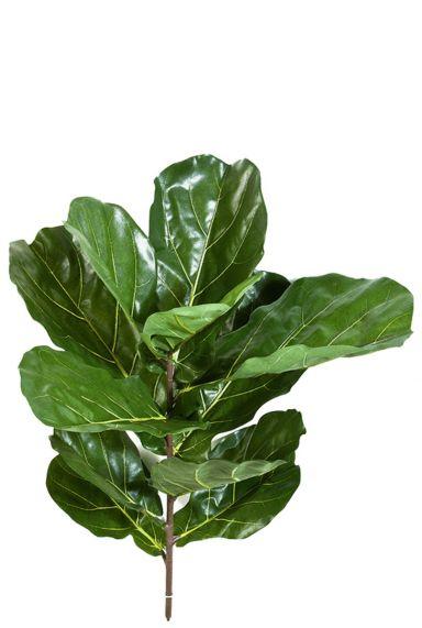 Ficus lyrata stek kunstblad