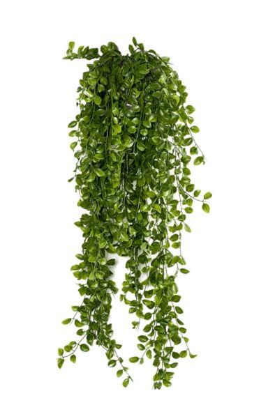 Ficus pumila hangplant kunstplant 1