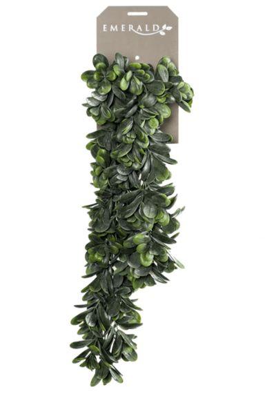Grassula hangplant kunstplant