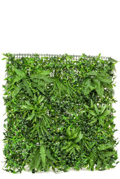 Groene muur groene wand planten