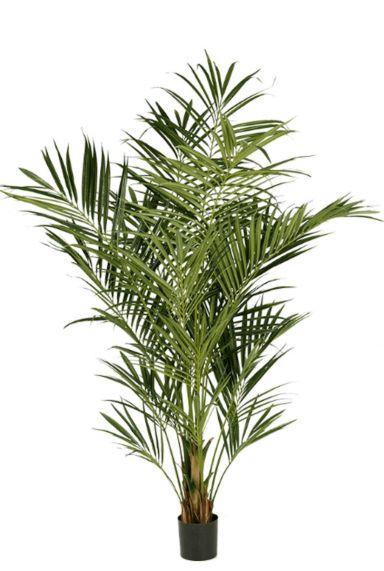 Grote kentia palm kunstplant