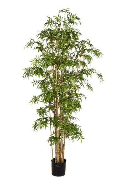 Japanse bamboo kunstboom