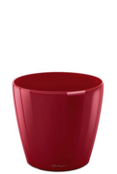 Kleine rode pot lechuza 28