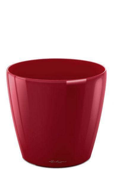 Kleine rode pot lechuza 43