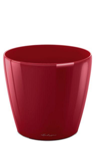 Kleine rode pot lechuza 50