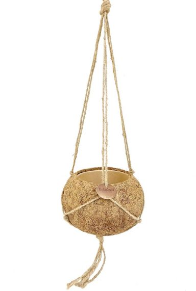 Kokodama kokos hang pot 1 1 2