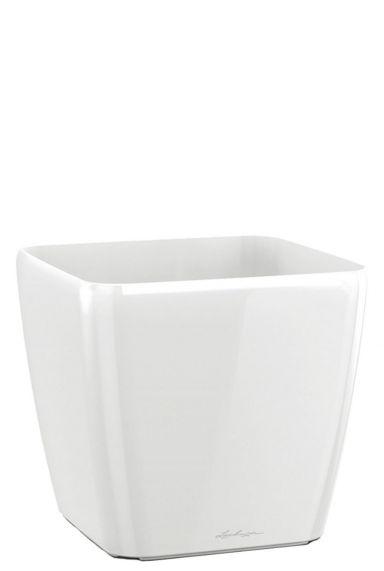Lechuza vierkant witte pot