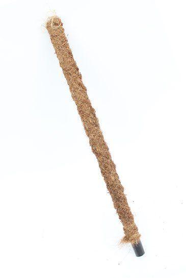 Mosstok