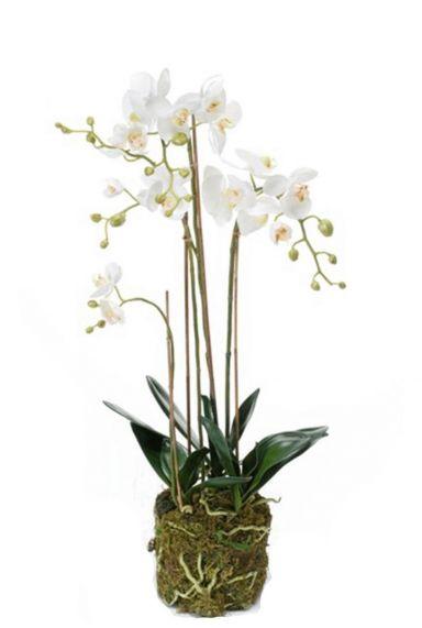 Phalaenopsis orchidee kunstbloem 3