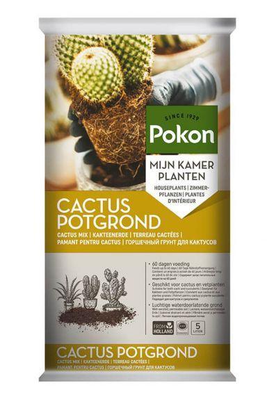 Pokon cactus potgrond