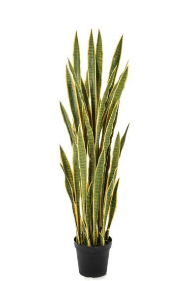 Sansevieria kunstplanten 1