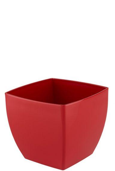 Vierkante artevasi rood