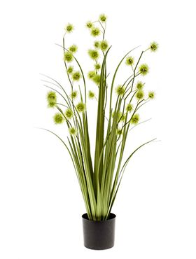 Grass pompom