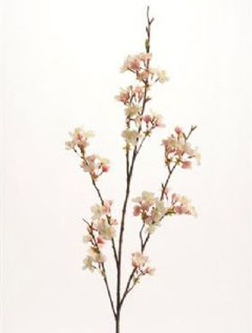 Cherry blossom spray