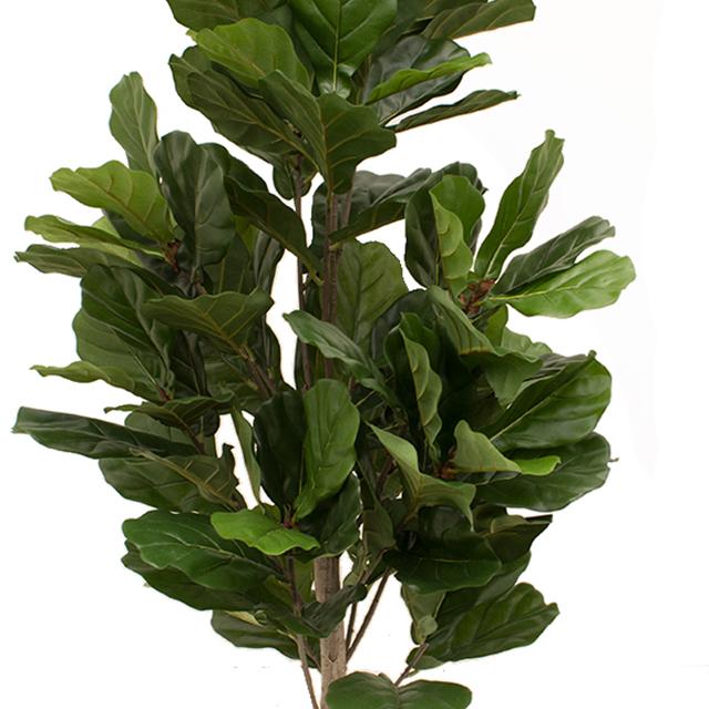 Grote kunstplanten kopen?