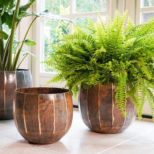 Metalen plantenbakken kopen online